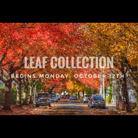 NEWS POST: Leaf Collection Begins Monday, October 12th