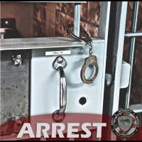 CRIMEWATCH Technologies , Inc.: ALBINO-SANTIAGO, Alexis - Driving While Operating Privilege...
