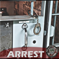 ARREST: MCCARRIGLE, Lisa - Theft By Unlawful Taking